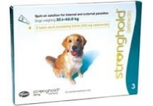 STRONGHOLD 240mg CHIEN SPOT-ON Solution 3 pipettes