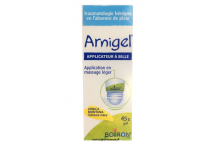ARNIGEL COUPS ET BOSSES ARNICA TUBE APPLICATEUR BILLE  45GR