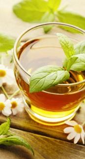 Plantes & huiles essentielles